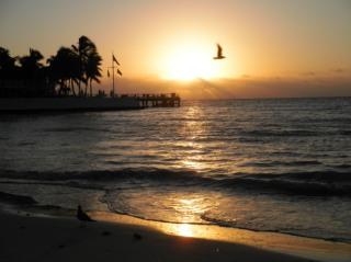 key west sunrise2
